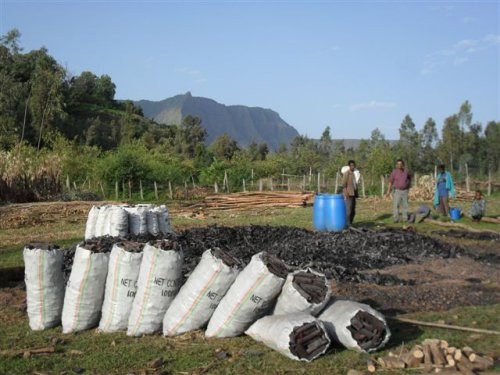 charcoal put into sacks for sale