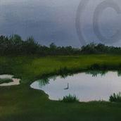 greenham ponds 2