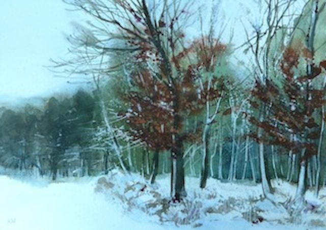 Snowy Beeches, Sandy Lane