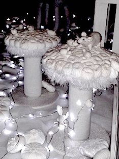 Giant toadstools by Kate Wild
