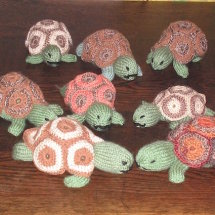 Knitted tortoises