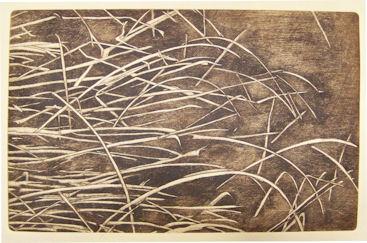 Reeds £30