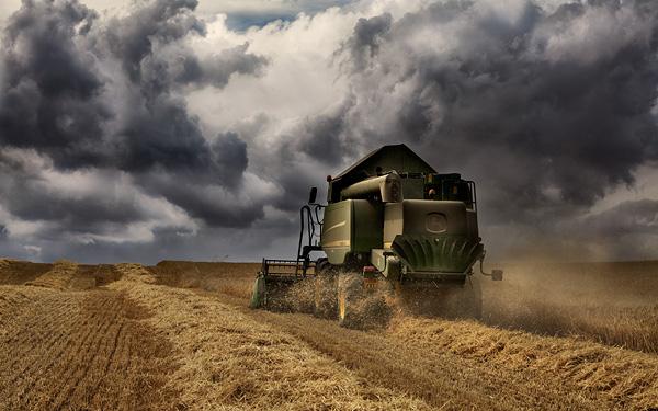 Stormy Harvest