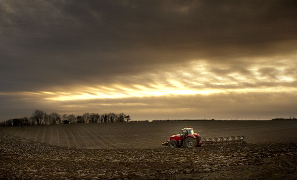 Ploughing in November