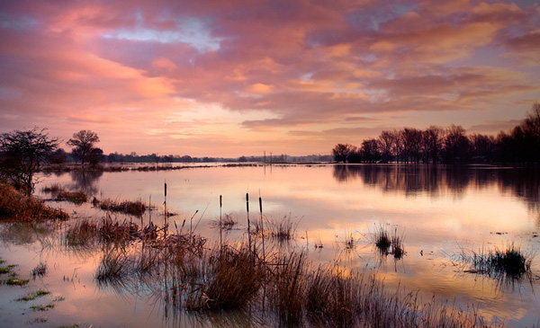 Sunrise Floods