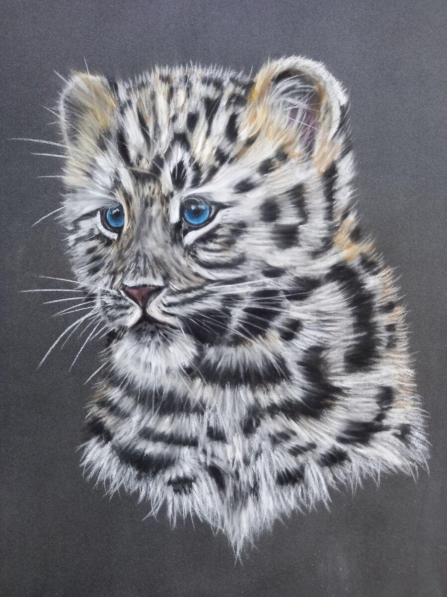 Amur Leopard Cub2