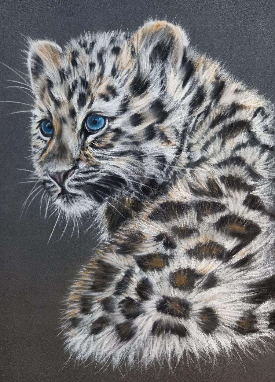 Amur Leopard Cub1