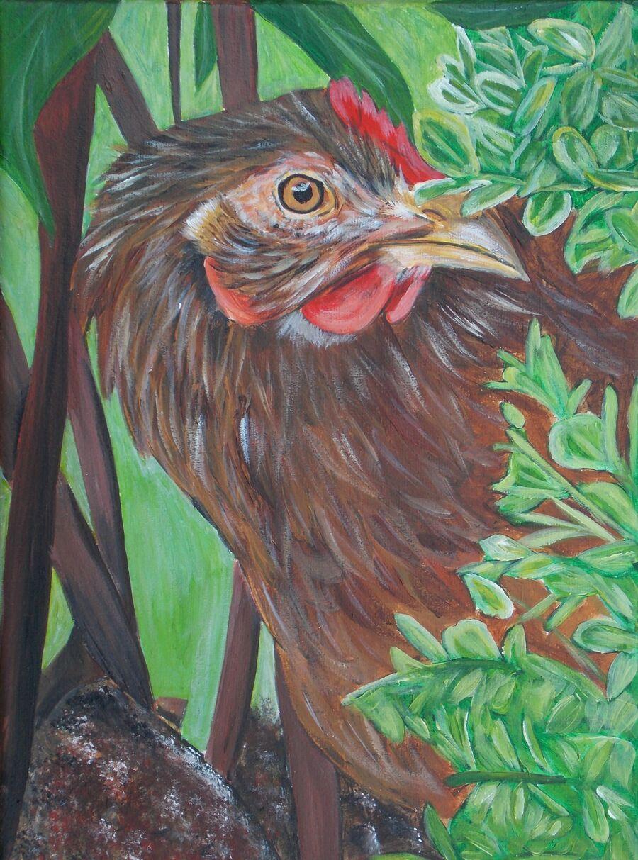 Brown Ranger Chicken