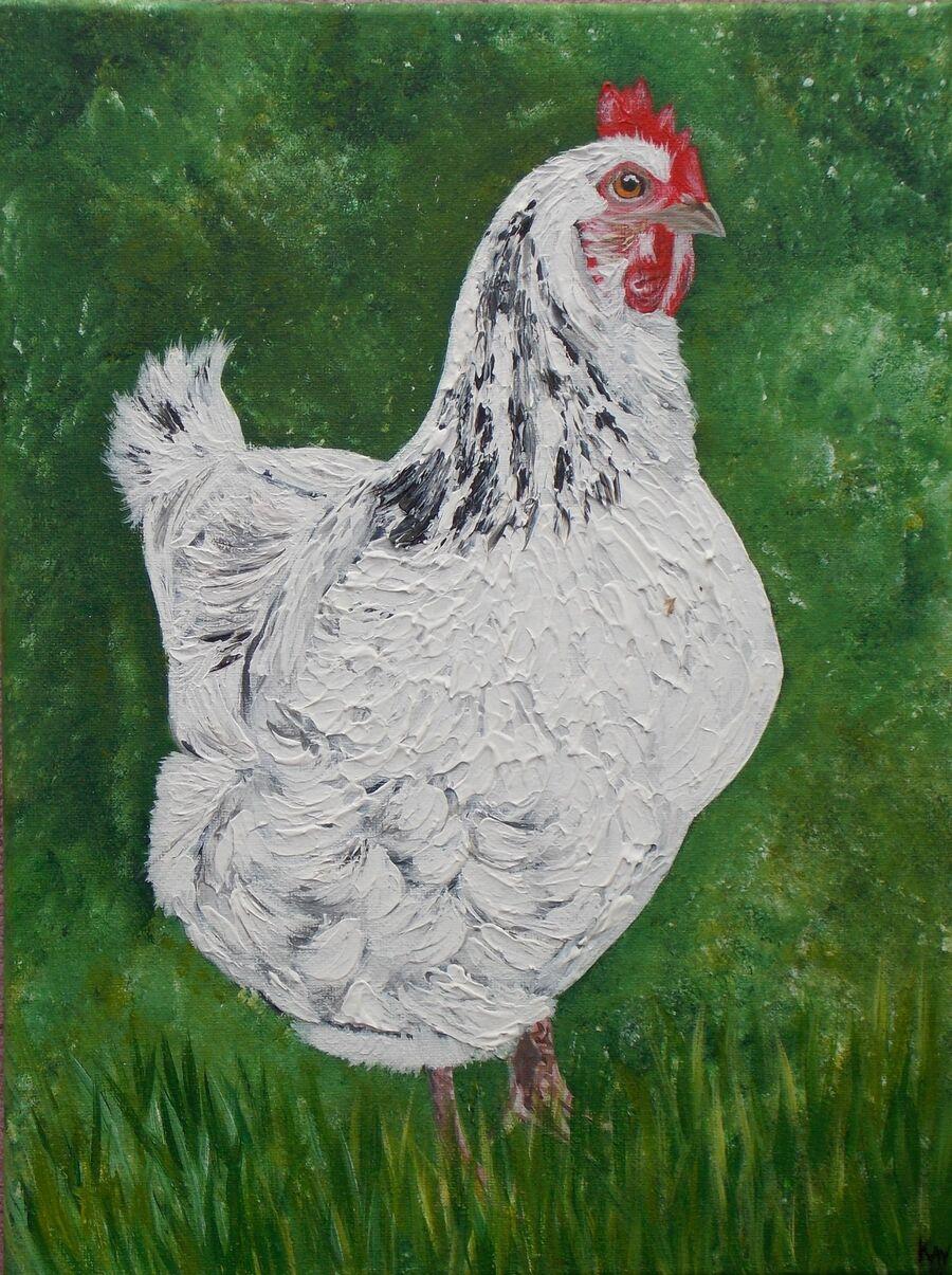 White Sussex Chicken - Textured