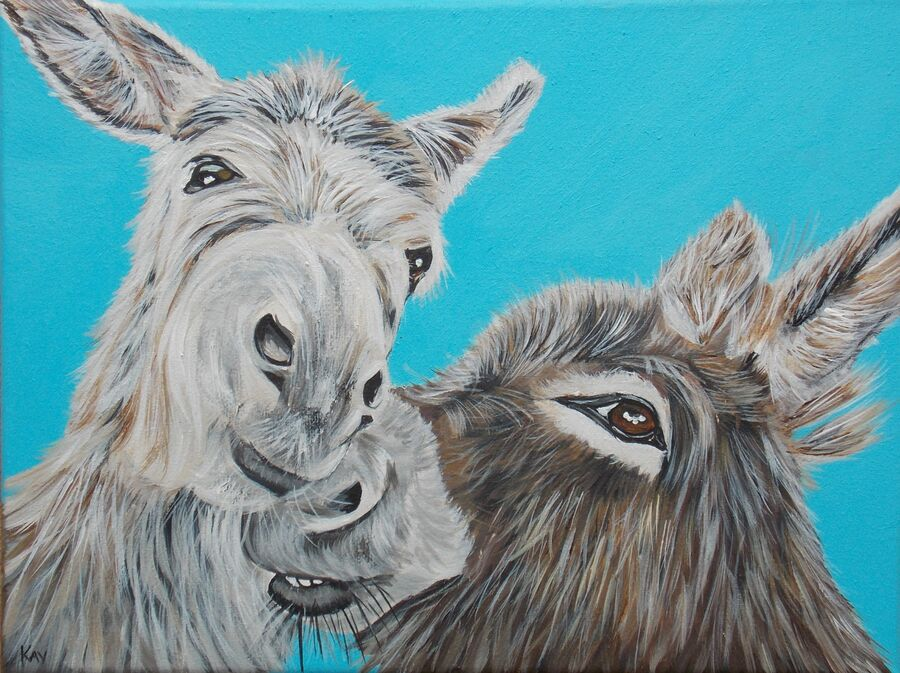Donkeys - Best Friends