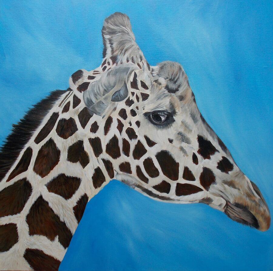 Giraffe - Oils