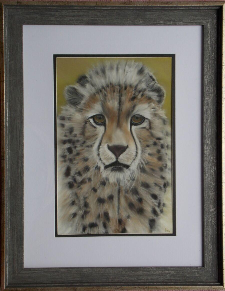 Cheetah Cub - Pastels