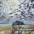Oystercatchers above the bothy