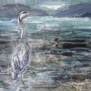Heron waits in the rain