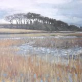 """Frost At Budleigh"" oil on canvas (Sold)"
