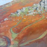 Sun On Dartmoor 2