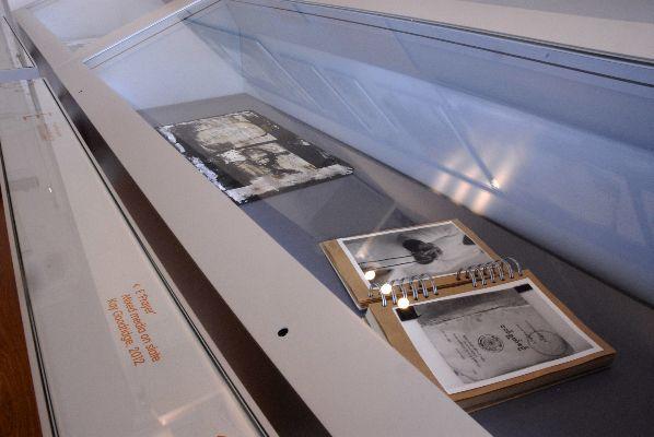 E display case 3 - Wiener