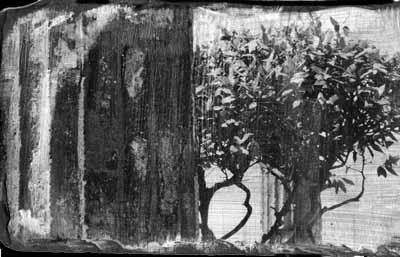 Photographic print on slate (liquid emulsion)