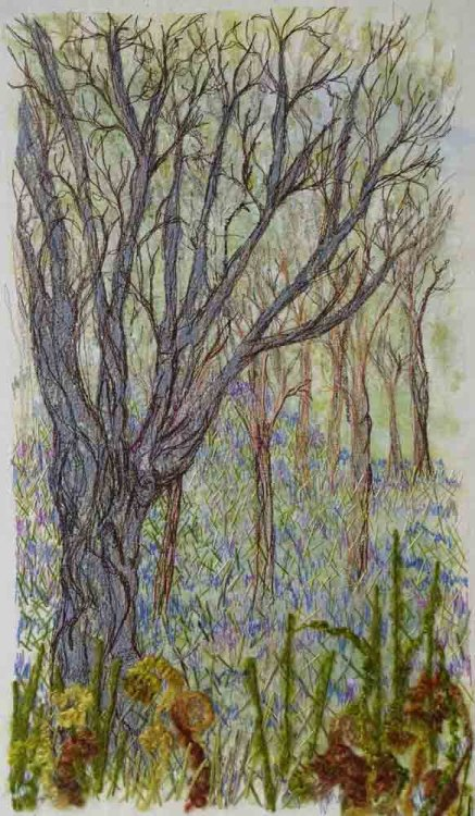 Bluebells at Brantwood - Sold