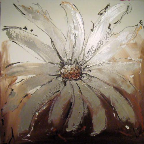 'Floral Shine'