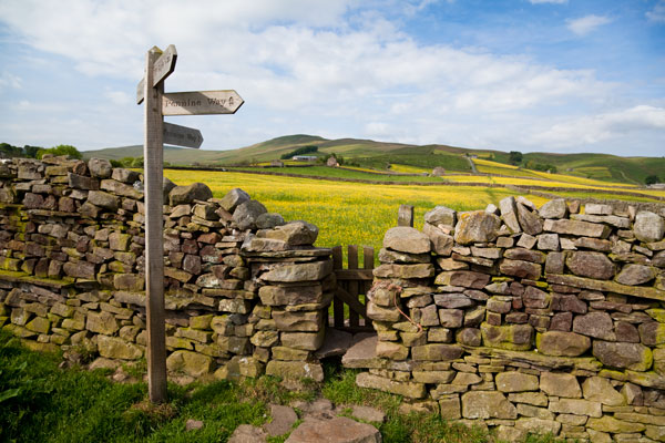 Wall stile through the meadows near Gayle