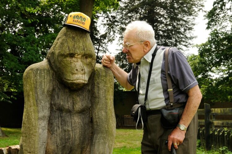 Elderly man and a gorilla