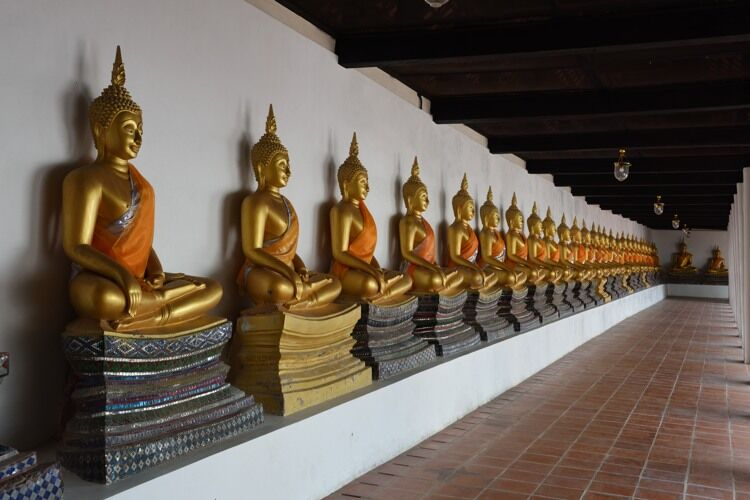 Seated statues of the Buddha