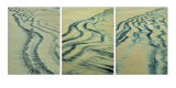 sand contors trip