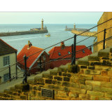 Whitby from the ledge