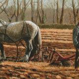Ploughing Men