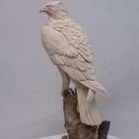Eagle in Wax