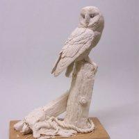 Barn Owl  sculpted in wax,