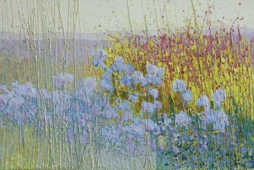 Scamptston perennial meadow