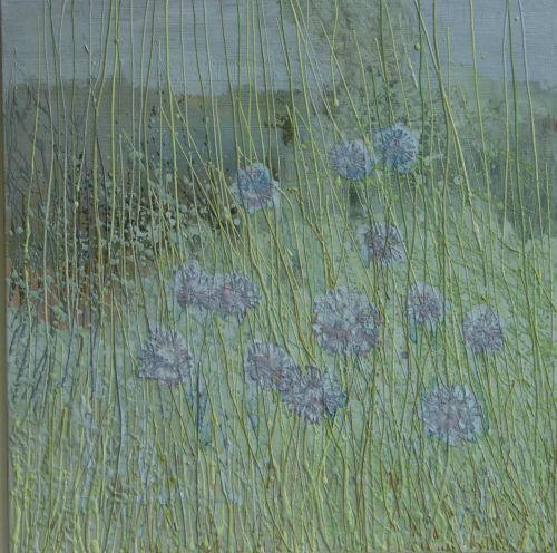 Meadow Grasses and Scabious