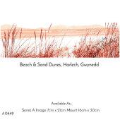 Beach & Sand Dunes, Harlech