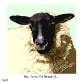 Yes, I Know I'm Beautiful...
