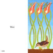 Wren (1)