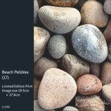 Beach Pebbles (17)