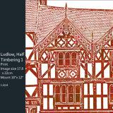 Ludlow, Half Timbering (1)