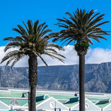Table Mountain from Cape Town