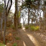 Coles Bay