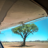 Madikwe Airstrip