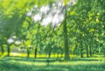 Green, green, green 2