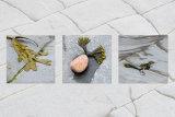 Seaweed Panel
