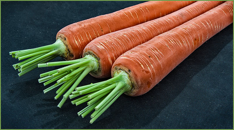 Trio Of Carrots