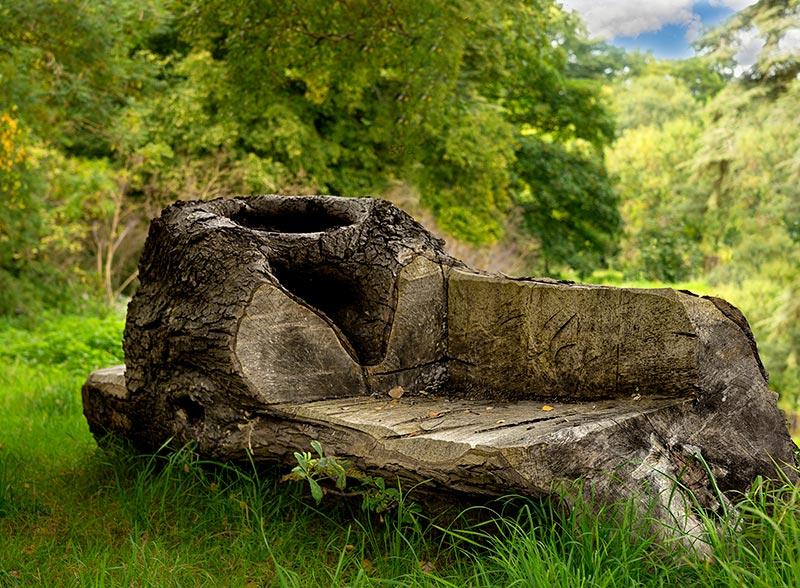 Woodland Seat