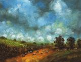 Galloway Fields