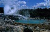 Pohutu geyser,thermal reserve, Roturua