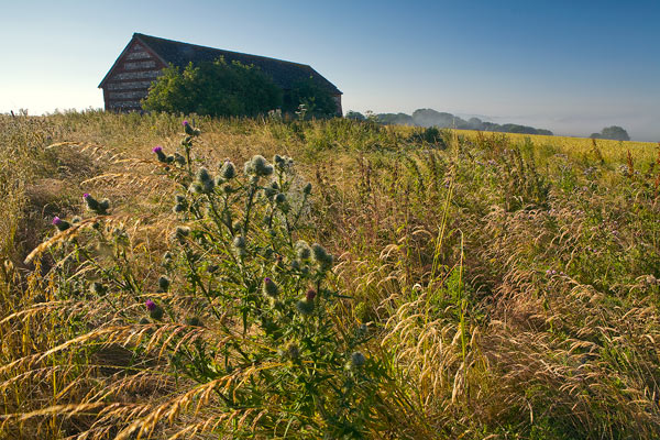 Downland Field Barn