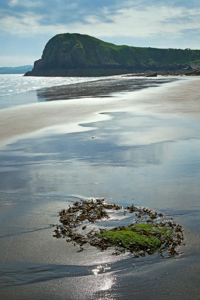 Castle Point Beach
